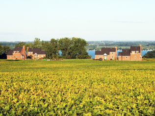 Early Summer Sale at Cobtree Vacation Rentals Finger Lakes